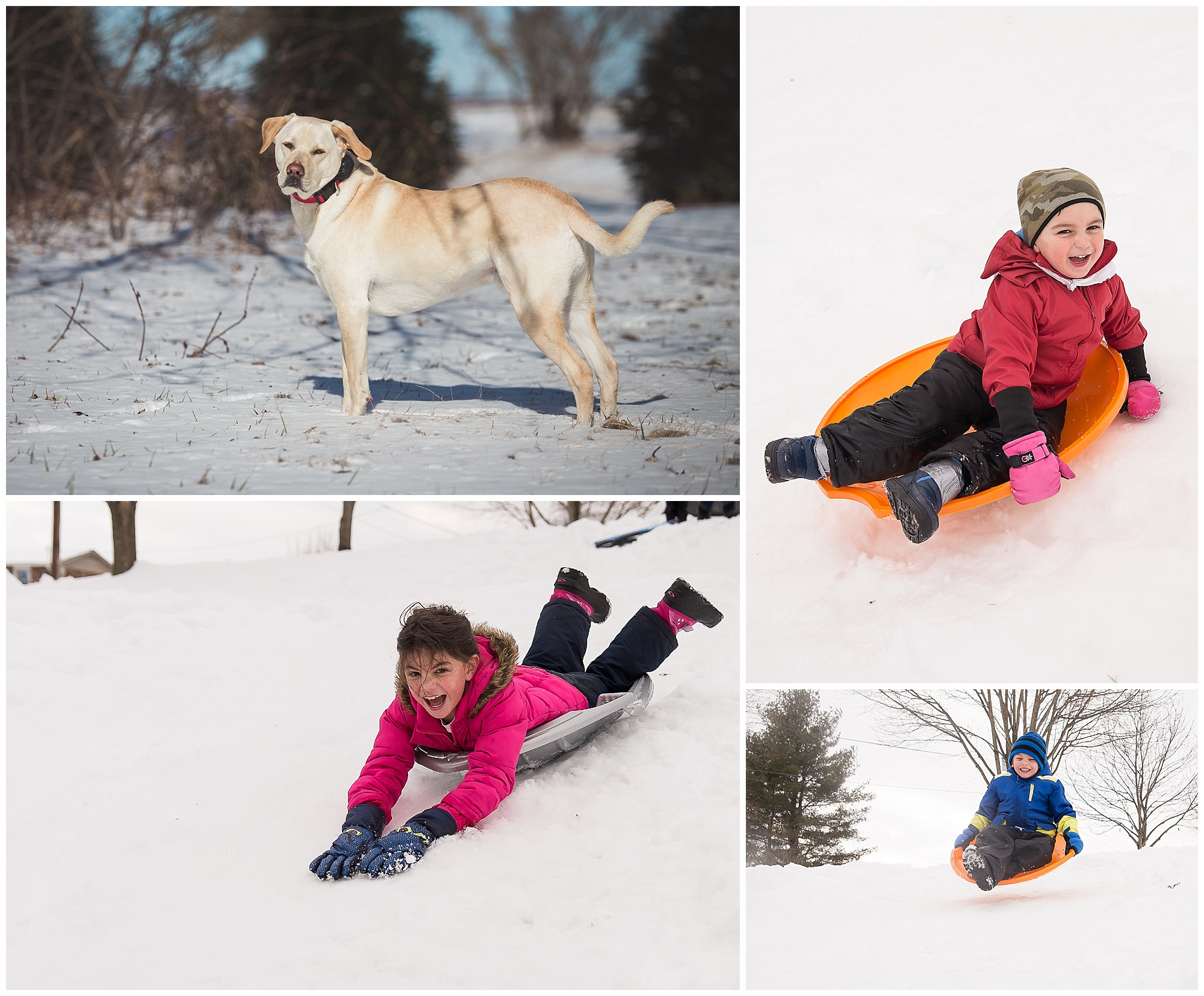 Exposure compensation 4 tips for better photos in the snow kristina rose photography