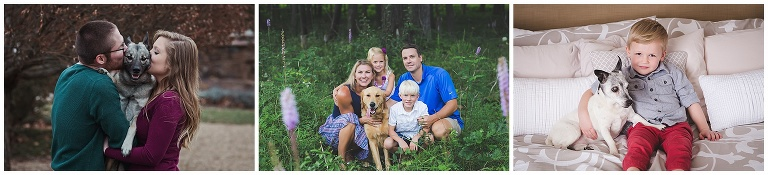family photos with dogs, photographers near me